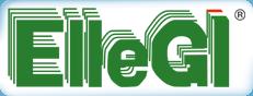logo_ellegi_4
